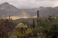 Sabino Canyon rainbow, Tucson, Arizona